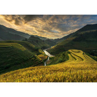 Rice Terrace in Vietnam by Sarawut Intarob