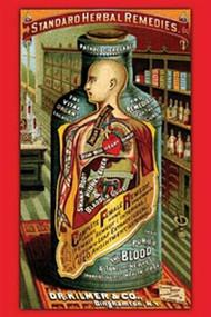 Dr. Kilmer's Standard Herbal Remedies J. Ottoman