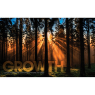 Growth Forest