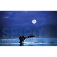 Spirit Whale