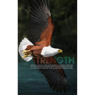 Strength Eagle