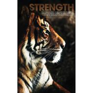 Strength Tiger