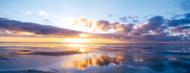 Privacy Screen: Sunrise On Beach North Sea