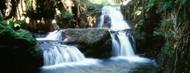 Privacy Screen: Waterfalls Hilo Hawaii
