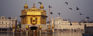 Privacy Screen: Waterfront View of Golden Temple