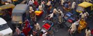 Privacy Screen: Traffic in Old Delhi