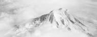 Privacy Screen: Aerial View of Mt Rainier