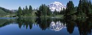 Privacy Screen: Reflection of Mt Rainier in Lake