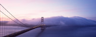 Privacy Screen: Bridge Across the Sea San Francisco