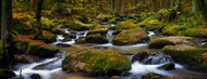 Standard Photo Board: Autumn Waters by Norbert Maier - AMER