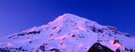 Privacy Screen: Mount Rainier