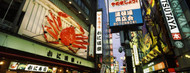 Standard Photo Board: Dotonbori Signs at Night - AMER