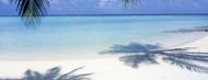 Privacy Screen: Laguna Maldives