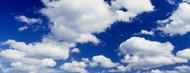 Standard Photo Board: Cumulus Clouds Low Angle View - AMER