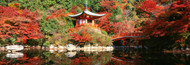Extra Large Photo Board: Daigo Temple Kyoto, Japan - AMER