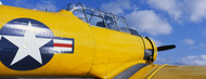 Standard Photo Board: Model G 1942 Flight Trainer - AMER