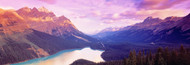 Standard Photo Board: Peyto Lake Alberta Canada - AMER - INDY