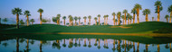 Extra Large Photo Board: Golf Course Marriott Palms AZ - AMER - INDY
