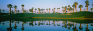 Extra Large Photo Board: Golf Course Marriott Palms AZ - AMER