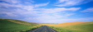 Extra Large Photo Board: Road Through Palouse Country - AMER