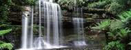 Standard Photo Board: Waterfall Mt. Field National Park - AMER