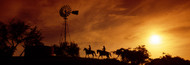 Extra Large Photo Board: Cowboys at Sunset - AMER