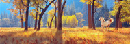 Extra Large Photo Board: Horse in Autumn Forest - AMER