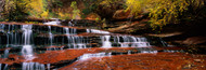Extra Large Photo Board: Waterfall in North Creek Zion National Park - AMER