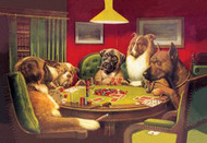 Dog Poker Is the St Bernard Bluffing