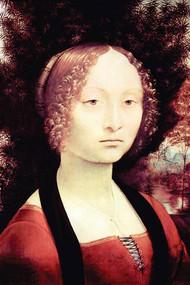 Portrait of a Dame by Da Vinci