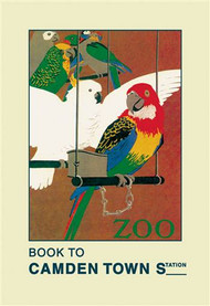 The London Zoo: Exotic Birds