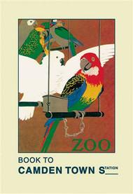 The London Zoo: Exotic Birds