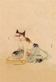 Japanese Cat Bathing