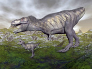 Tyrannosaurus Rex Mother And Offspring