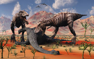 Two T Rex Dinosaurs Feed On The Remains Of A Dead Sauropod