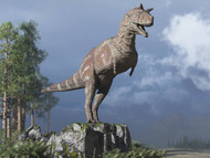 Carnotaurus On Rock Looking Over A Valley