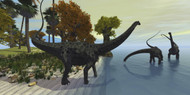 Three Diplodocus Dinosaurs Visit An Island In The Prehistoric Era