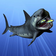 A Cenozoic Era Megalodon Devours Two Swimming Tuna