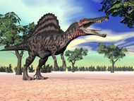 Spinosaurus Standing In The Desert With Trees