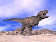 Aggressive Tyrannosaurus Rex Dinosaur In The Desert