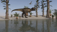 Tyrannosaurus Rex Hunting For Its Next Meal Along The Water's Edge