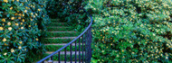 Historic District Charleston Curved Staircase