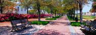 Waterfront Park Charleston SC