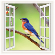 Window Views Blue Bird