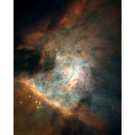 Star Birthing Region in the Orion Nebula