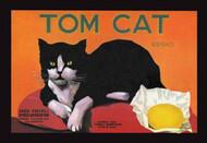 Tom Cat Brand