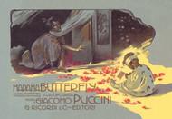 Madama Butterfly: The Struggle