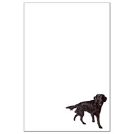 Flat Coat Retriever Dog Pack 1