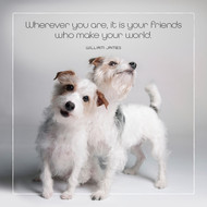 Friends Make Your World Card