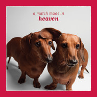 Match Made in Heaven Doxie Love Card